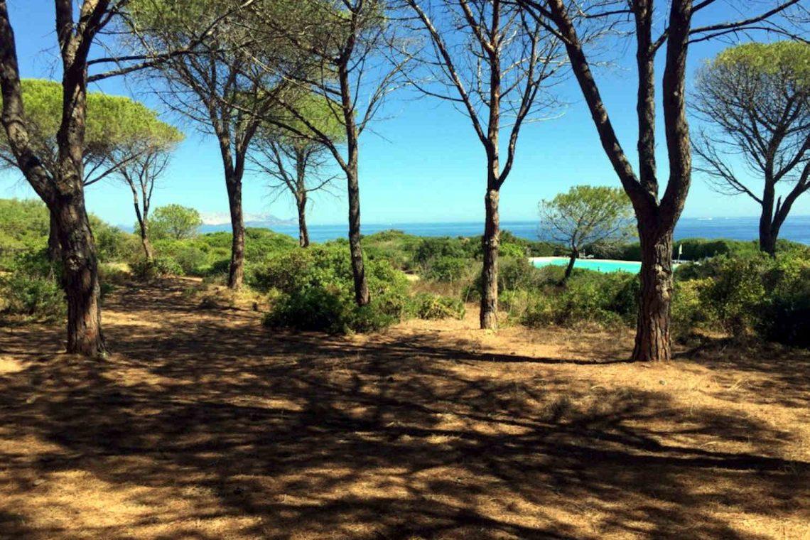 Haus Sardinien am Meer 37