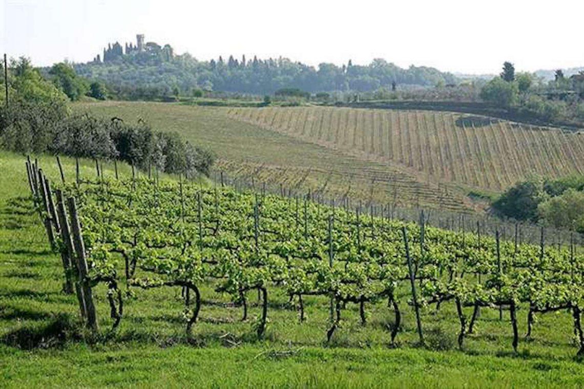 Weingut in Chianti zu verkaufen 01